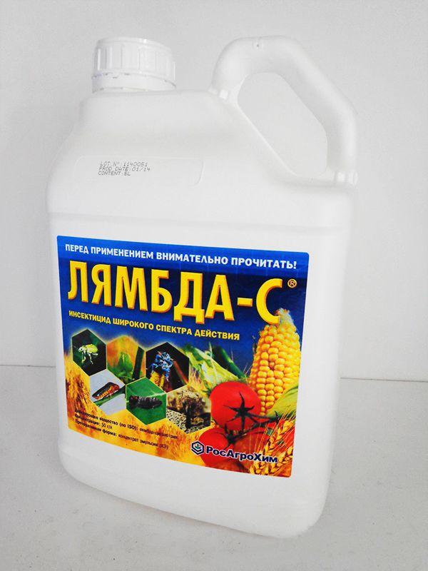 Лямбда - С