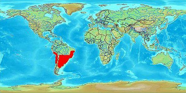 Карта распространения триатомовых клопов
