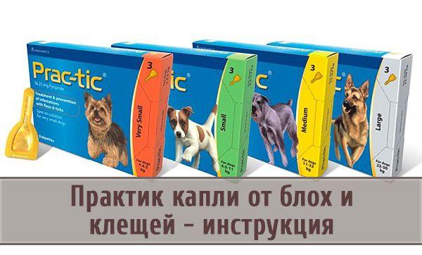 капли практик для собак инструкция по применению - фото 2
