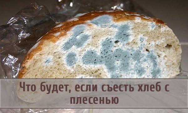 Будет ли нанесен организму вред, если съесть с хлебом плесень, появившуюся на нем
