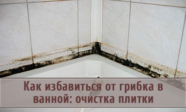 Черная плесень и грибок в ванной: способы устранения