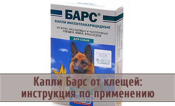 Барс – средство для уничтожения и профилактики клещей у собак и кошек