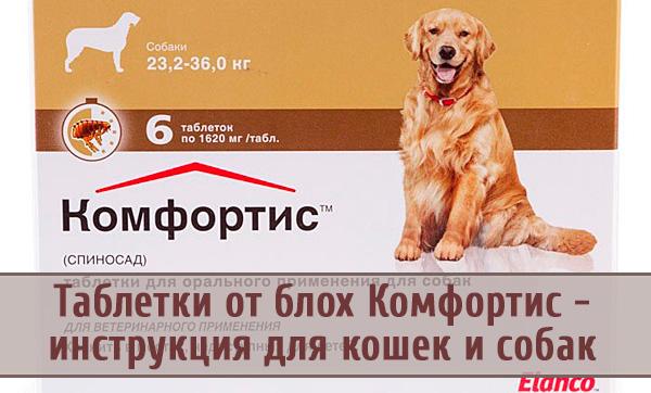 Инструкция по использованию таблеток от блох «Комфортис»
