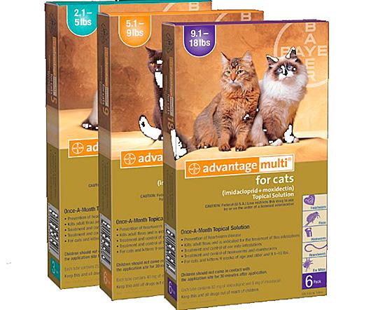 Адвантейдж – капли для кошек разного возраста и веса