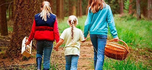 Готовиться к прогулкам на природе нужно тщательно, чтобы предотвратить укус