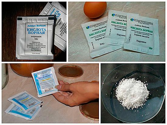 Аптечное средство – борную кислоту – нужно рассыпать вдоль плинтусов