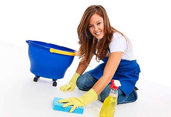 Регулярная уборка предотвратит появление нежелательных «квартирантов»