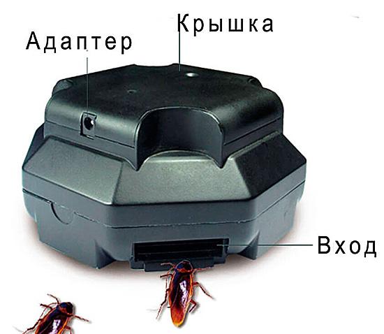 Электрическая ловушка убивает тараканов с помощью разряда тока