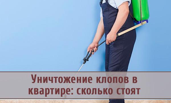Уничтожение клопов в квартире: выбираем услуги дезинсекционной службы