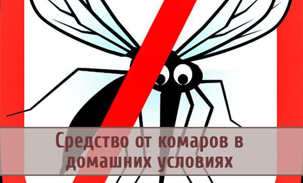 Какие средства от комаров помогут выиграть войну с вредителями?