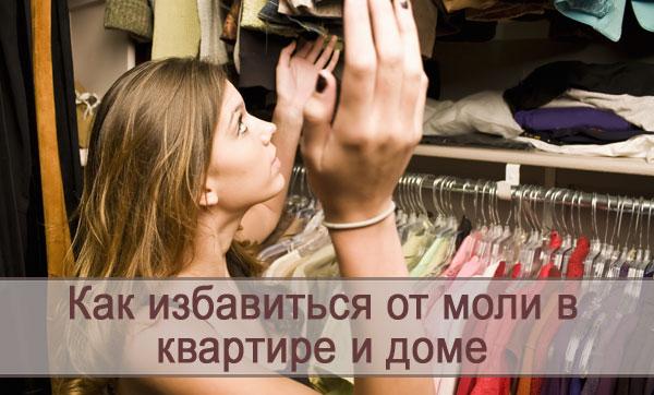 Эффективные способы избавиться от моли в квартире и доме: меры борьбы