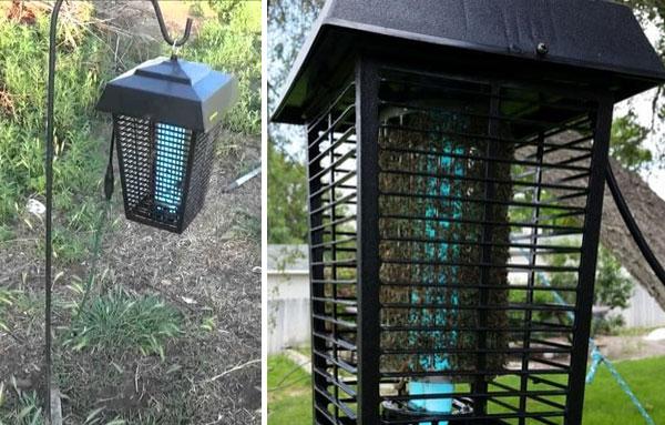 варианты расположения лампы от комаров