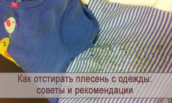 Советы и рекомендации как отстирать плесень с одежды