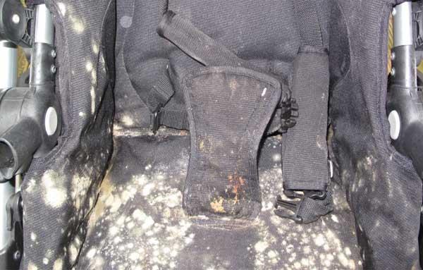Плесень въелась в ткань коляски