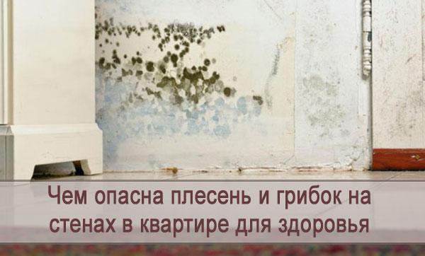 Чем опасны появление плесени и грибка на стенах в квартире для здоровья
