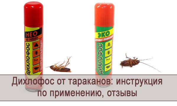Обзор средства Дихлофос от тараканов: инструкция по применению, отзывы