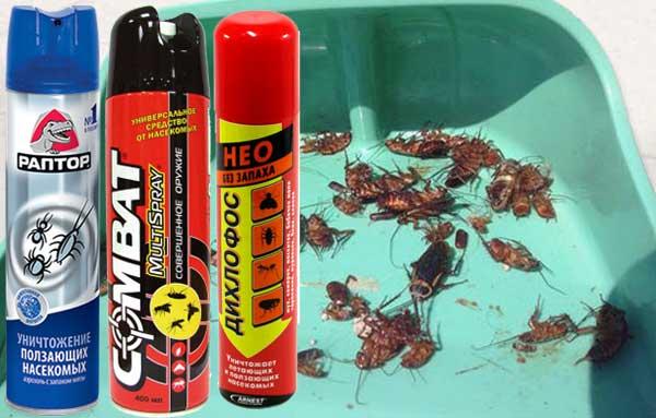 Эффективные аэрозольные средства от тараканов