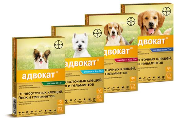 """капли от блох для щенков и собак """"Адвокат"""""""