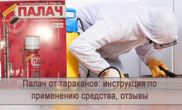 Обзор и инструкция по применению средства от тараканов Палач, отзывы