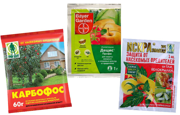 Пестициды для борьбы с тлей на капусте