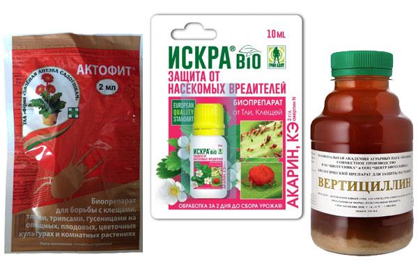 Биопрепараты от капустной тли