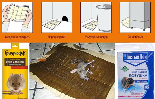 Клеевые ловушки от крыс