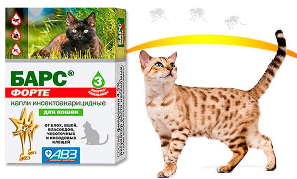 капли Барс для взрослых котов