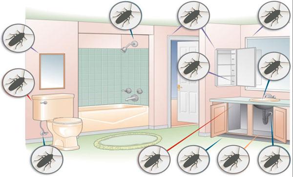 тараканы в ванной